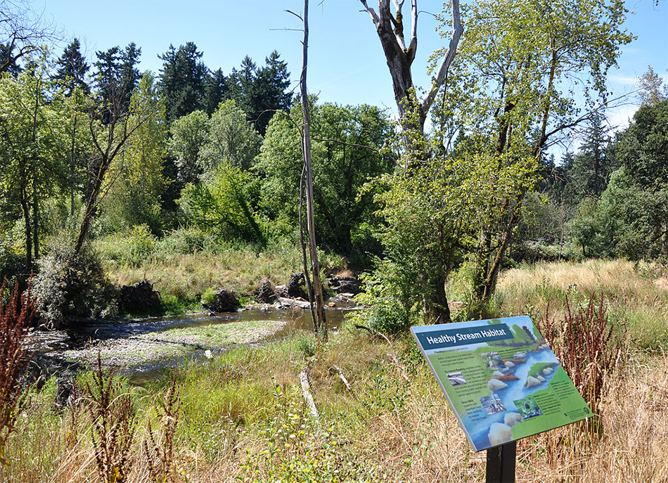 A Healthy Streams Habitat informational sign sits in front of a wooded wetland in Tideman Johnson Park.